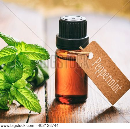 Peppermint Essential Oil, Fresh Leaves And Blossoms On Wooden Background