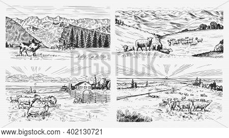 Rural Meadow Set. A Village Landscape With Sheep, Hills And A Farm. Sunny Scenic Country View. Hand