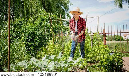 Smiling Young Woman Gardening And Watering Her Plants At Backyard. Using Garden Hose While Working I