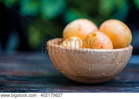 Fresh Ripe Apricots In Wooden Bowl Outdoors. Blurred Background