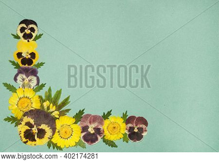 Page From An Old Photo Album. Flowers Chrysanthemum And Pansy. Scrapbooking Element Decorated With L