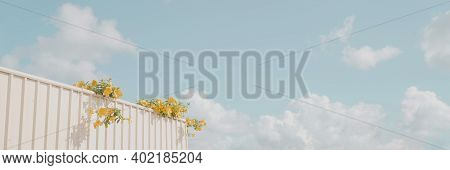 Home Fencing With Yellow Flowers And Blue Sky, Summer And Spring Background, Staycation Concept