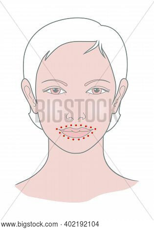 Shiatsu Points Face Massage, Acupuncture. Female Head View. Isolated On White Background