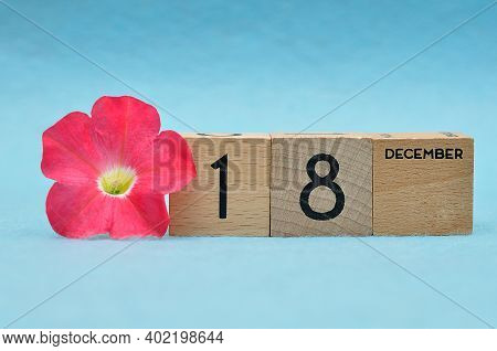 18 December On Wooden Blocks With A Petunia On A Blue Background