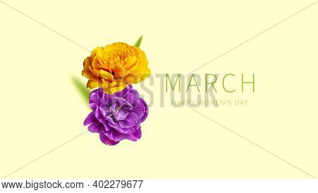 International Womens Day. Creative Concept For March 8 From Purple Yellow Tulips. Number Eight From
