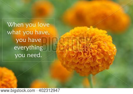 Inspirational Quote - When You Love What You Have, You Have Everything You Need. Words Of Wisdom Con