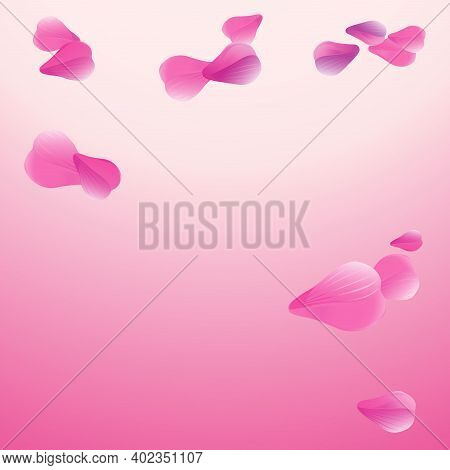 Light Pink Purple Flying Petals Isolated On Soft Pink Gradient Background. Sakura Roses Petals. Vect