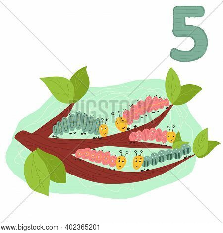Counting From 1 To 10. Number 5, Page With Colorful Illustration. Caterpillars On The Brunch. Presch