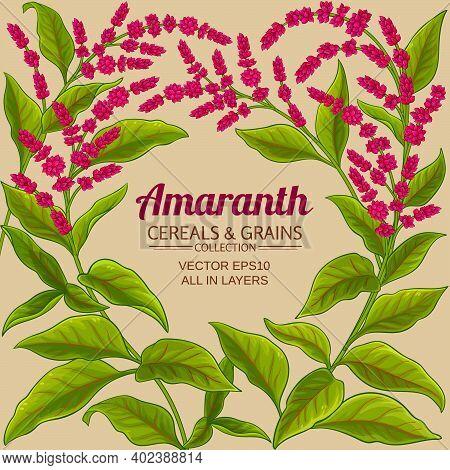 Amaranth Plant Vector Frame On Color Background