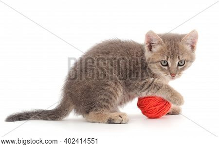 Little Kitten Playing With A Ball Of Yarn Isolated On White Background.