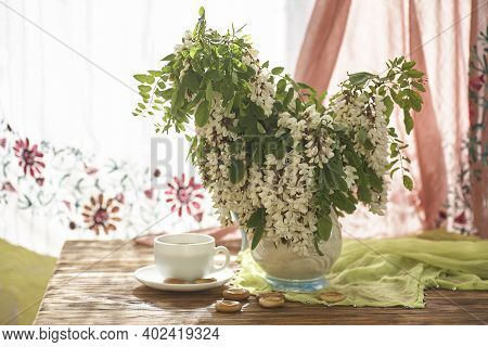 Acacia Flowers In White Vase. Still Life Wit Acacia Flowers