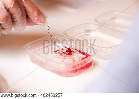 Chemistry Education And Training Concept. Closeup Woman Dripping Red Chemical Element Into A Contain