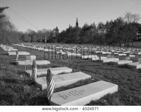 Cemetery In Brooklyn - Civil War Gravestones -Blk/White
