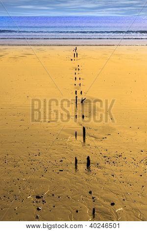 Sunshine Over The Golden Beach Breakers