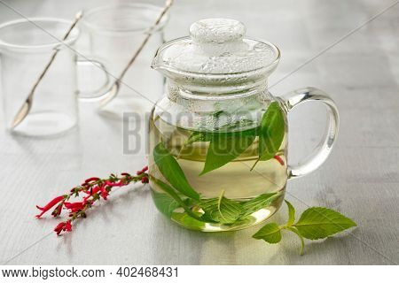 Glass teapot with hot Salvia elegans tea and fresh leaves and red flowers in front close up