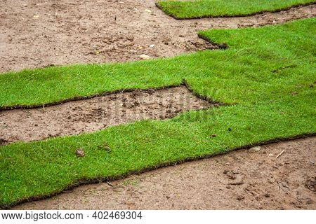 Turf - Laying Green Turf Using Rolled Turf