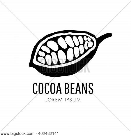 Cocoa Pods And Cocoa Beans Icon, Chocolate Basis Isolated On A White Background. Vector Illustration