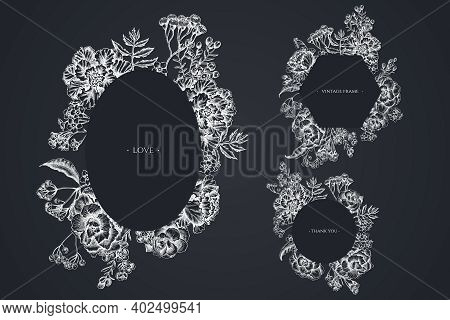 Floral Frames With Chalk Wax Flower, Forget Me Not Flower, Tansy, Ardisia, Brassica, Decorative Cabb