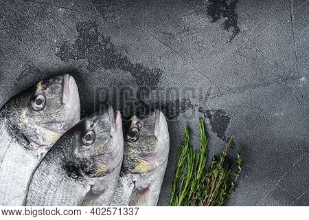 Raw Set Of Sea Bream Or Gilt Head Bream Dorada Fish With Herbs Pepper Lime Tomato For Cooking And Gr