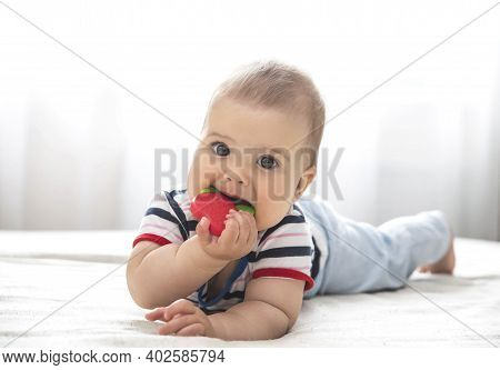 Baby Is Nibble A Rubber Toy Because The Child's Teeth Are Being Cut