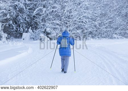 Nordic Walking.a Woman Is Engaged In Nordic Walking In The Winter In The Park.