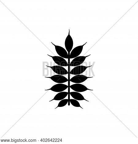 Grain Ear Seed, Spike Wheat, Rye . Flat Vector Icon Illustration. Simple Black Symbol On White Backg