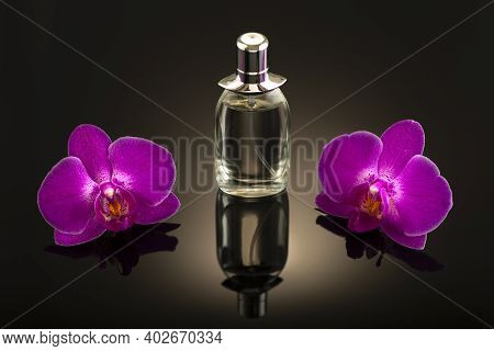 Studio Photo, Perfume Bottle With Two Pink Orchid Flowers On A Dark Background Untitled.