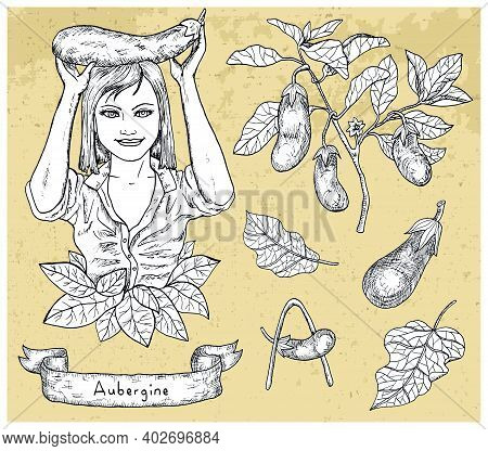 Design Set With Beautiful Woman Holding Aubergine And Vegetables Over Textured Background. Hand Draw