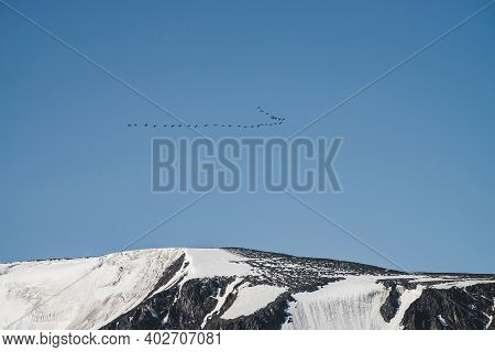 Flock Of Birds In Blue Sky Fly Over Snowy Mountain Ridge. Beautiful Scenic Landscape With Silhouette