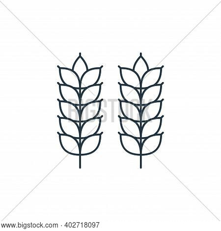 wheat icon isolated on white background. wheat icon thin line outline linear wheat symbol for logo,