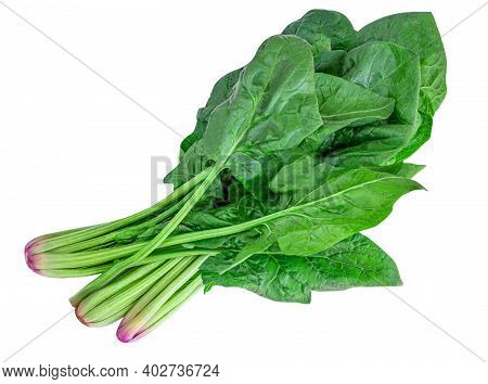 Fresh Spinach Leaves Isolated On White Background. Raw Green Spinach  Top View. Vegan  Food Concept