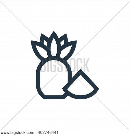 pineapple icon isolated on white background. pineapple icon thin line outline linear pineapple symbo