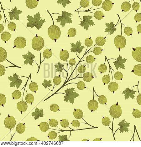Vector Seamless Pattern With Green Gooseberry; For Wrapping Paper, Packaging, Greeting Cards, Poster