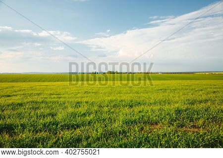 Scenic view of green rural land and cultivated fields. Location place of Ukrainian agricultural region, Europe. Ecology concept. Agrarian industry. Photo wallpaper. Discover the beauty of earth.