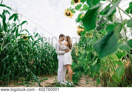 Beautiful Gorgeous Woman And Stylish Handsome Male, Rustic Couple In A Sunflower Field Kissing, Tend