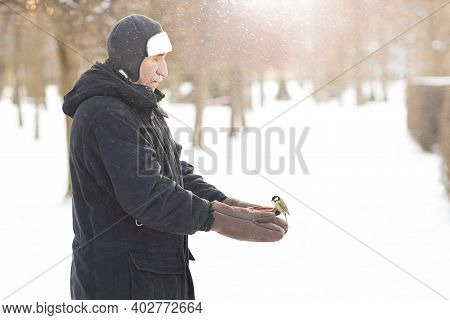A Man Feeds Birds In The Park In Cold Winter, A Titmouse Flew To The Feeder, With Kindness And Care
