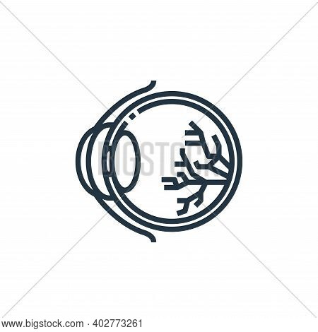 eye ball icon isolated on white background. eye ball icon thin line outline linear eye ball symbol f