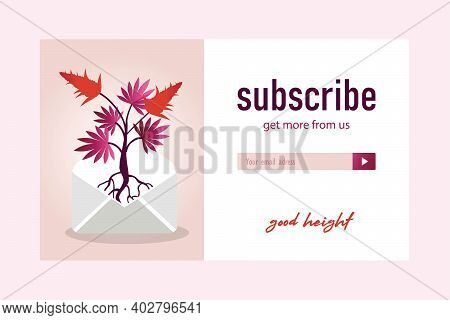 Pink Email Subscription Design With Marihuana Bush. Online Newsletter Template With Cannabis Cones,