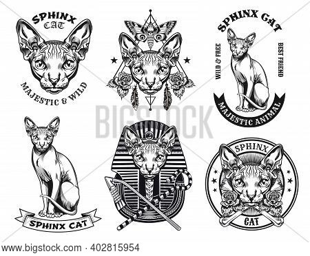 Stylish Sphinx Cat Tattoo Designs Vector Illustration Set. Vintage Furless Cat In Pharaoh Hat Sittin