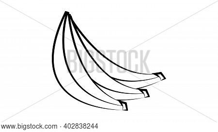 Vector Bananas. Bunches Of Black Banana Fruits With White Stroke Isolated On White Background. Banan