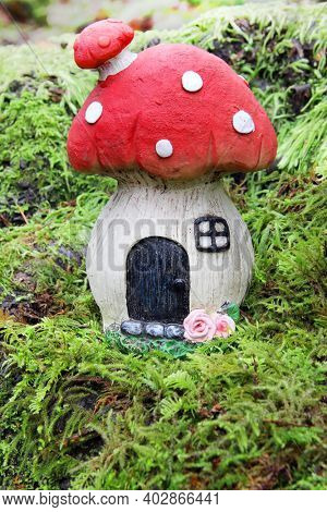 Little fairytale mushroom house naturally weathered on the mossy forest floor in the beautiful rainforest of British Columbia, Canada.