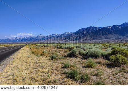 Beautiful Sierra Nevada Mountain Range Meeting The Desert. Desert Shrubs And Grass In The Foreground