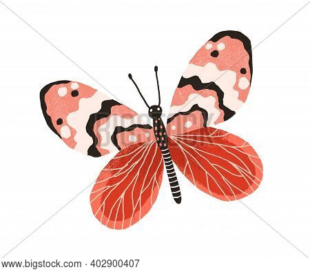 Hand Drawn Gorgeous Butterfly With Bright Wings And Antennae. Colored Beautiful Flying Moth. Colorfu