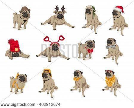 Cute Funny Pug Dogs Set. Adorable Friendly Purebred Chubby Pet Animal Wearing Trendy Clothes And Acc