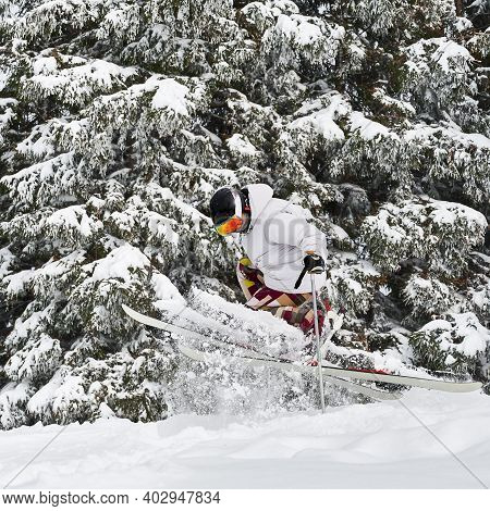 Male Skier Skiing On Fresh Powder Snow With Beautiful Snowy Trees On Background. Man Freerider In Sk