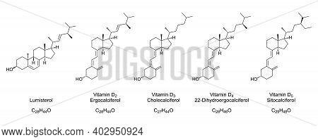 Vitamin D Forms, Chemical Structures And Skeletal Formulas. Lumisterol, Ergocalciferol, Cholecalcife