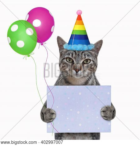 A Gray Cat In A Party Hat Holds A Blank Holiday Poster And Colored Balloons. White Background. Isola