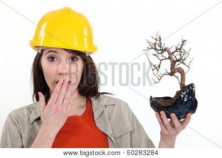 Surprised tradeswoman holding a bonsai plant