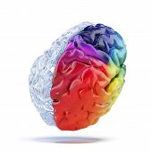 Colored brain isolated on a white background. 3d render poster