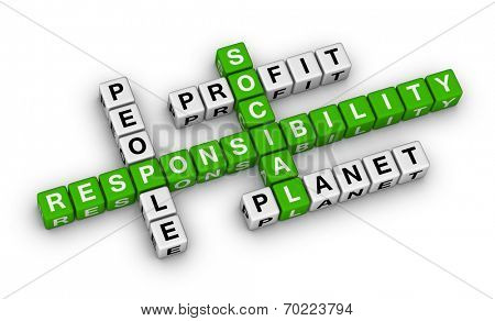 social responsibility crossword puzzle poster